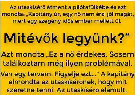 https://margit2.hu/forumba-kepek/09-gazdagno-helycsere2.jpg