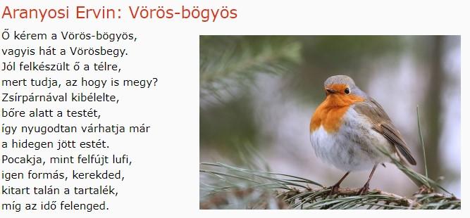 https://margit2.hu/forumba-kepek/147-aranyosi-e-voros-bogyos.jpg