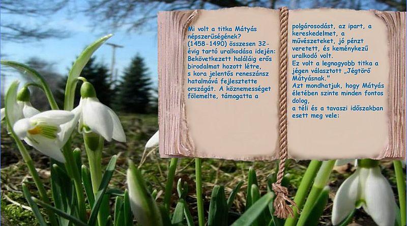 https://margit2.hu/forumba-kepek/19-februar-28a.jpg